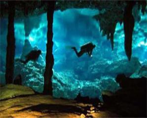 Keajaiban Alam Bawah Laut.