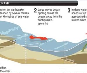 7 Fakta Dari Tsunami
