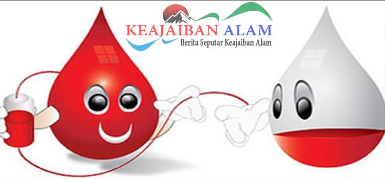 manfaat donor darah untuk kesehatan anda