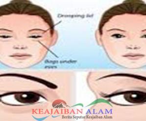 Hanya Dengan Menggunakan Telor Dan Kapas Kelopak Mata Anda Akan Kencang Dan Muda Dalam 2 Menit