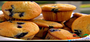 Resep Blueberry Muffin Cupcake