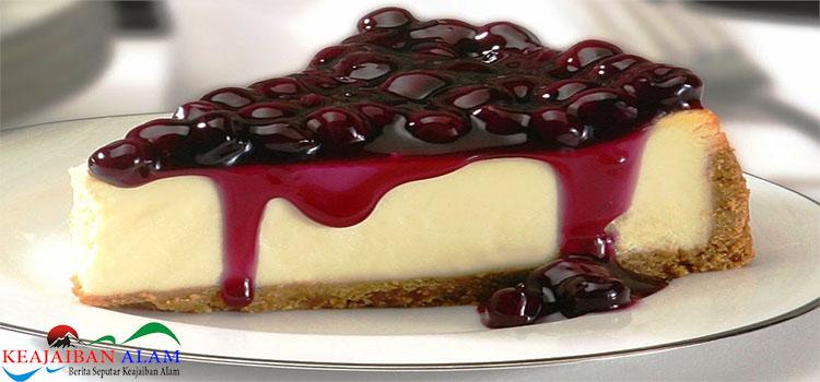 Resep Membuat Blueberry Cheese Cake