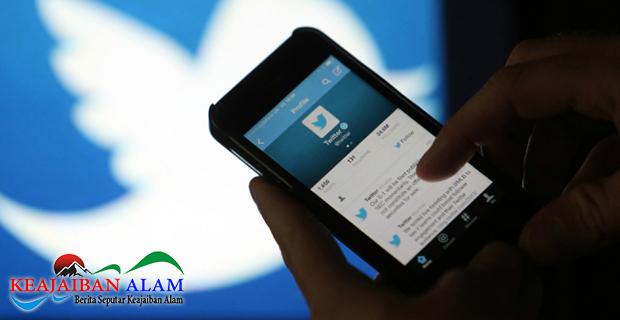 Hanya Bernada Ancaman Kepada Seekor Nyamuk, Akun Twitter Pria di Jepang Diblokir