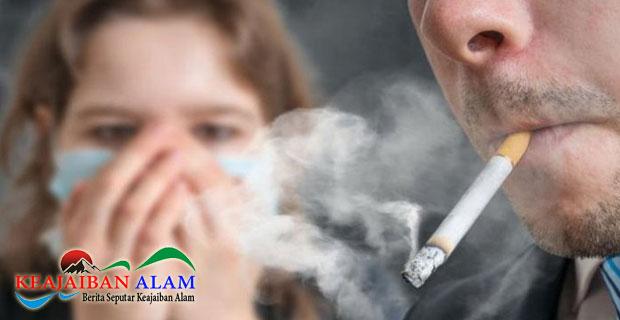 Waspadai Bahaya Dari Asap Perokok Aktif Yang Menyebabkan Gangguan Kesehatan