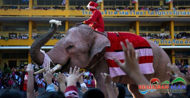 Unik! Bukan Rusa, Santa Claus Tunggangi Gajah Dan Bagi Kado Natal di Thailand