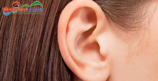 Yuk Simak Apa Sih Makna Tahi Lalat yang Terletak di Bagian Telinga?