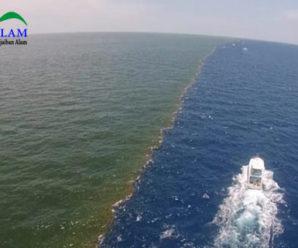 Aneh Tapi Nyata! Inilah Alasan Mengapa Dua Air Laut Yang Bertemu di Teluk Alaska Tidak Pernah Menyatu Hingga Sekarang Ini