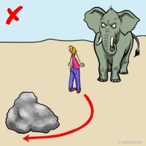gajah jpg