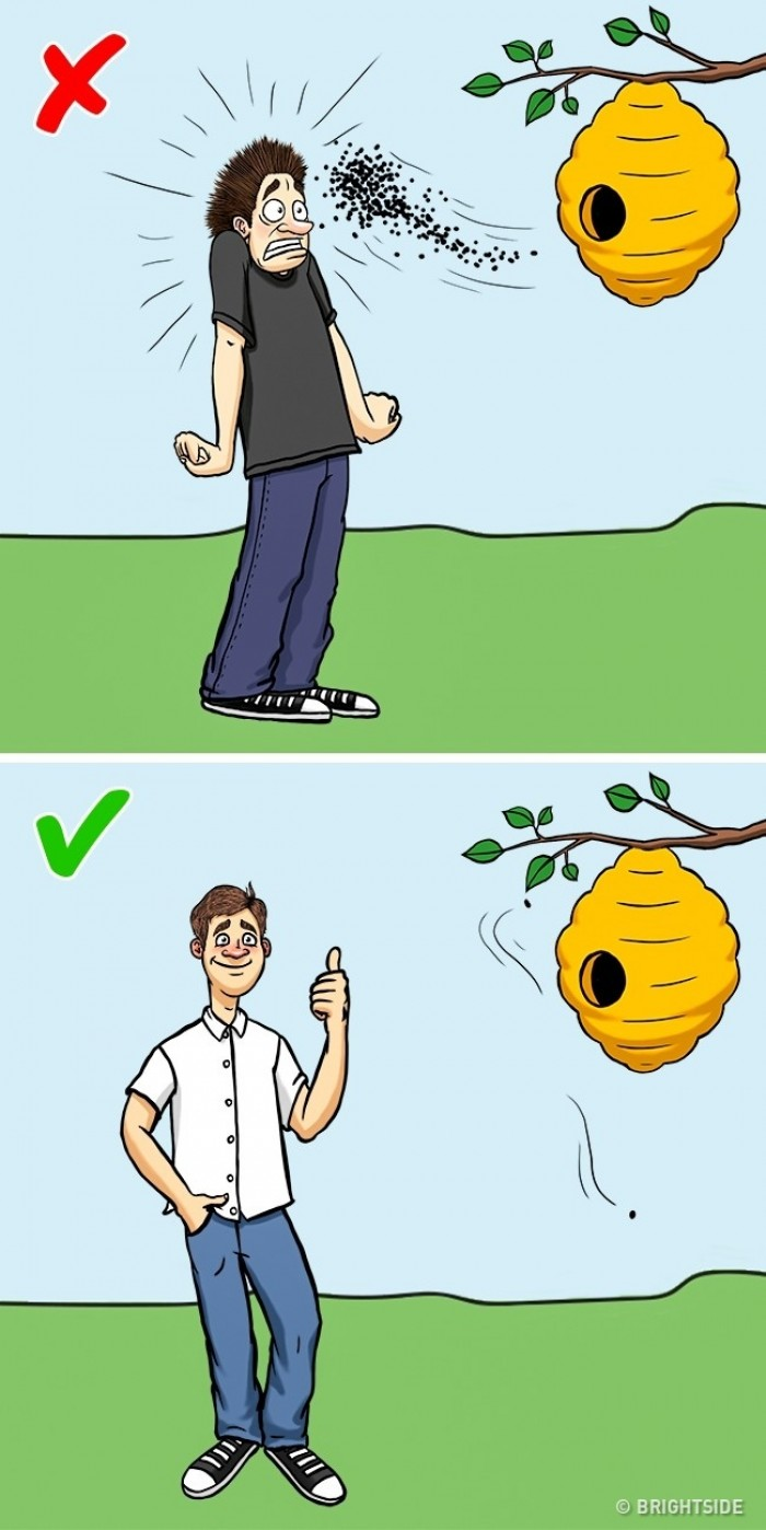 lebah jpg