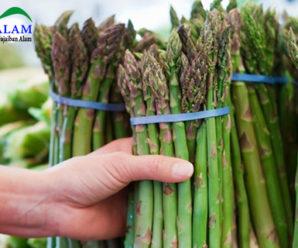 Sehatkan Jantung Dengan Konsumsi Sayuran Asparagus