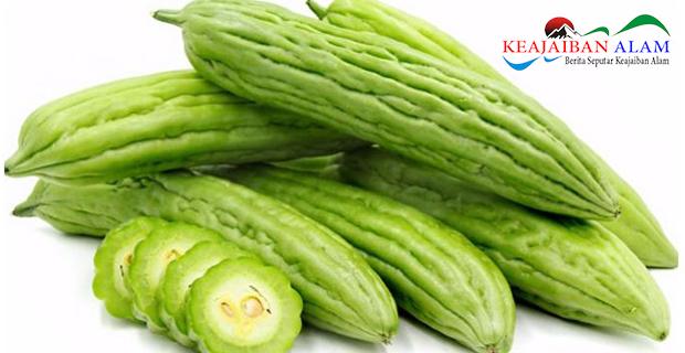 Ini Dia Manfaat Baik Konsumsi Sayuran Pahit Bagi Kesehatan