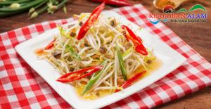 Enaknya Resep Masakan Rumah Cah Tauge Udang Rebon