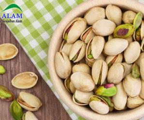 Kandungan dan Manfaat Dibalik Cemilan Sehat Kacang Pistachio