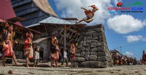 Asal Usul Lompat Batu Fahombo di Nias Yang Menjadi Tradisi Menarik Bagi Wisatawan