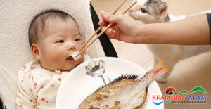 Di Usia Berapa Bayi Boleh Makan Ikan? Yuk Cari Tahu Infonya!