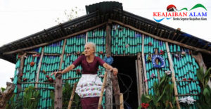 Mengubah Botol Bekas Menjadi Kreasi Menakjubkan, Yuk Simak Kisah Nenek Berusia 87 Tahun Bangun Rumah Dari Plastik