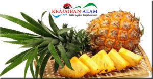 www.keajaibanalam.com
