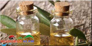 Cara Benar Manfaatkan Tea Tree Oil Untuk Masalah Kulit