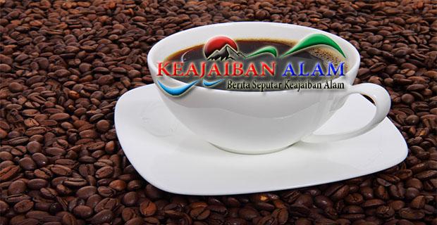 http://keajaibanalam.com