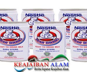 Manfaat Kesehatan Susu Beruang Untuk Para Perokok.~.~