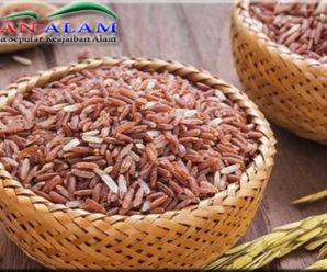 Cara Memasak Beras Merah Menjadi Nasi Yang Pulen