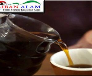 Coffee Night Malioboro YOGYAKARTA Akan Segera Diselenggarakan Bentar Lagi