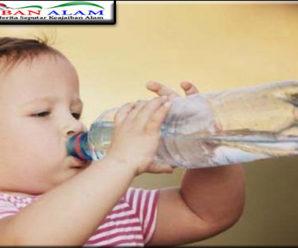 Dengan Banyak Mengasih Meminum Air Putih Pada Anak Bagus Untuk Meningkatkan Multitasking Pada Anak