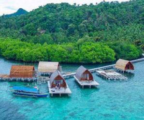 Keajaiban Surga Nemo Yang Berada Di Pulau Pahawang