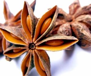 6 Manfaat Dari Bunga Lawang yang Sayang Dilewatkan