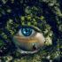 Sepuluh Keajaiban Alam  yang Misterius dan Mengerikan di Dunia.